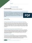 IT strategic plan.pdf
