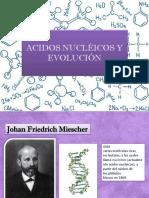 acidos-nucleicos.pptx