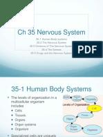 Ch_35_Nervous_System.ppt