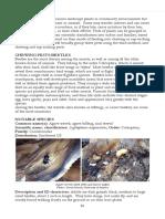 6 Plant pests F.pdf