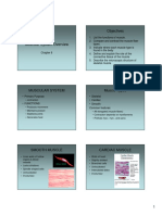 micromuscle-network.pdf