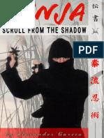 Ninja Ninjutsu martial arts  Scroll of the Shadow