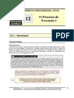 DPC 12 - O Processo de Execução I.pdf