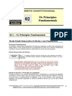CNT 02 - Os Princípios Fundamentais