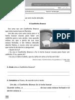 3º ano - Português - Diagnóstico