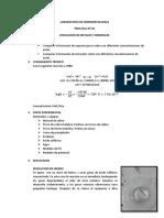 hidro-lab.docx
