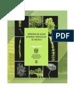 Libro Algas Verdes