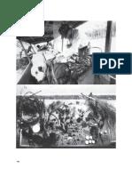 7-kwon-miwon-um-lugar-apc3b3s-o-outro-em-portugues-artigo-imprimir.pdf