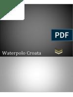 Reglas Del Juego Waterpolo