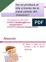 prg 3 y 4.pptx