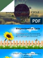 Biogeochemical Cycle (1)