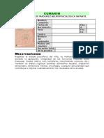 103829331 Cumanin Protocolo de Respuestas