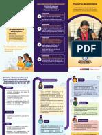 Triptico del proyecto.pdf