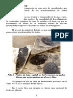 3LIMPIO_TEXTO-PRINCIPAL_DEVONICO_POTOSI[1].pdf