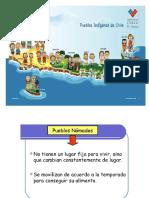 Presentacion Pueblos Originarios