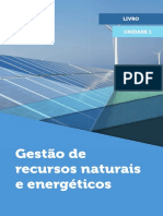 Gestão de Recursos Naturais e Energéticos LIVRO.pdf