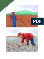 cultivo de arroz.docx