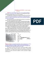 STUDIU_MATERIALELOR_CARTE.pdf