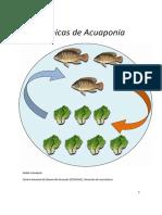 Técnicas de Acuaponia.pdf