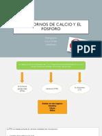 Trastornos de calcio y el fosforo.pptx
