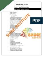 Shine Institute - Abap &_ca