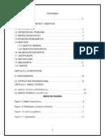 perfil de proyecto analisis.docx