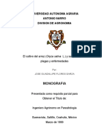 monografia del arroz.pdf