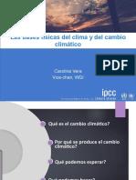 Carolina_Vera1.pdf