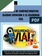 TRABAJO SEGURIDAD VIAL.docx