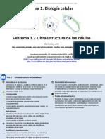 1_02_Ultraestructura de Las Células