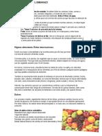 Plan_Nutricional_Embarazadas.pdf