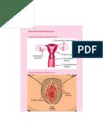 HIV-AIDSbooklet_part2.pdf