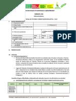 6 FORMATO DEL INFORME FINAL DE TOE 2013.docx