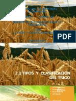 282134901-2-1-Tipos-y-Clasificacion-Del-Trigo.pdf