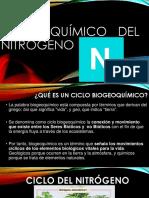 CICLO BIOGEOQUÍMICO DEL NITRÓGENO.pptx