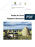 statistici Buc 2008.pdf