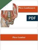Plexo Lumbosacro
