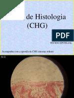 Atlas de Histologia - Epitelial