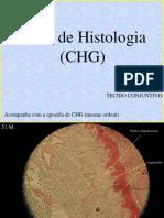 Atlas de Histologia - Conjuntivo