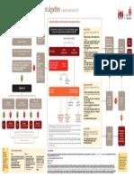 ACS_therapy_algorithm-printable.pdf