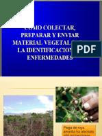 Practica 7 Ecologia