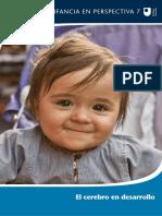 El-cerebro-en-desarrollo-0131.pdf