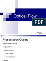 OpticalFlow05thMay2010