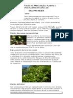 Boas Práticas Na Preparação, Plantio e Pós Plantio de Ora-pro-nobis v2.01