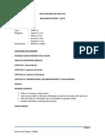 pauta_informe_practica_2013_completo.doc