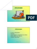 Ergonomia_novembro.pdf