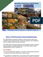 Basics of Wild Harvested Mushroom Identification(1).pdf