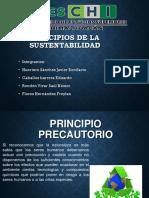 Principios-de-la-sustentabilidad.pptx