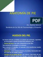 Anatomía de Pie