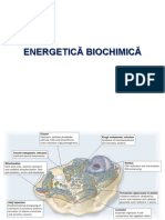 ENERGETICA 2013.ppt